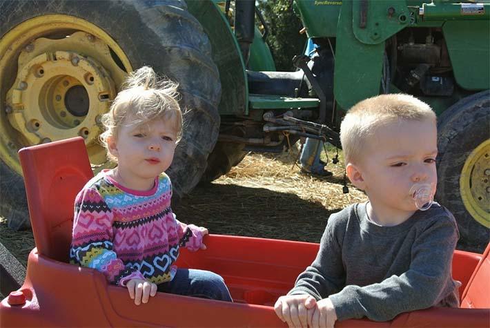 niños en una granja